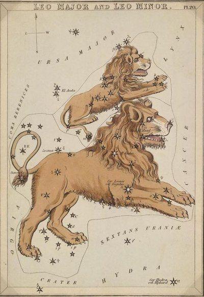 leo  http://fc07.deviantart.net/fs38/i/2008/350/8/0/Vintage_Astrology_Leo_by_HauntingVisionsStock.jpg