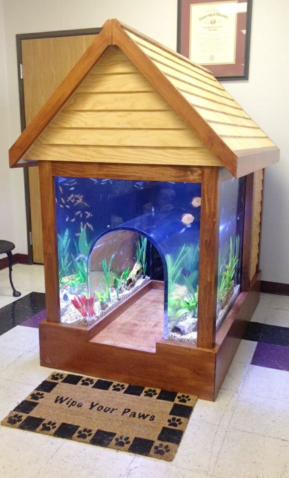 This is cool......Custom 2-in-1 fish tank / dog kennel - incredible! Or for cats