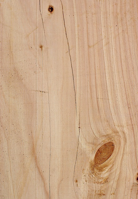 WW81: Wood Texture: Macrocarpa pine by Craig Jewell Photography, via Flickr