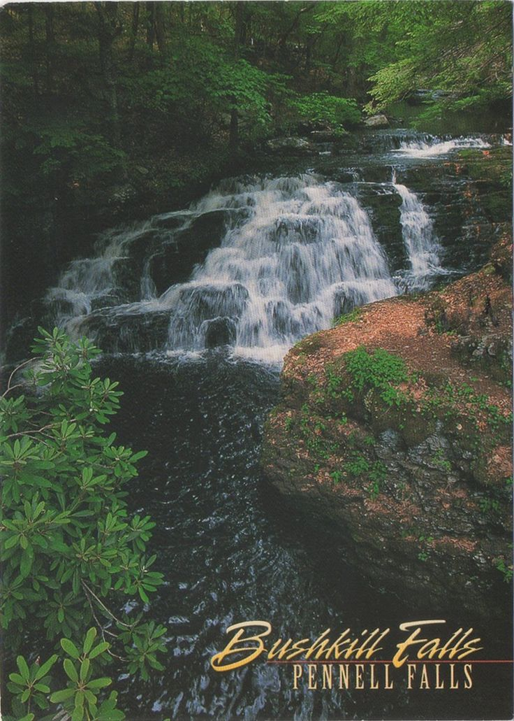 """Swap - Arrived: 2017.08.02   ---   Bushkill Falls (or The """"Niagara of Pennsylvania"""") is among the Keystone State's most famous scenic attractions. This  is a series of eight privately owned waterfalls, the tallest of which cascades over 100 feet (30 m), located in Northeast Pennsylvania's Pocono Mountains in the United States. Beginning at the headwaters of the Little Bushkill Creek, the water descends the mountain."""