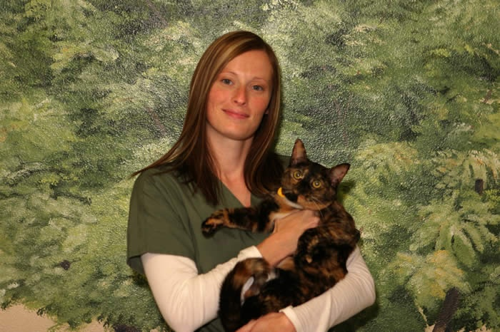 Information About Associates Degree in Veterinary