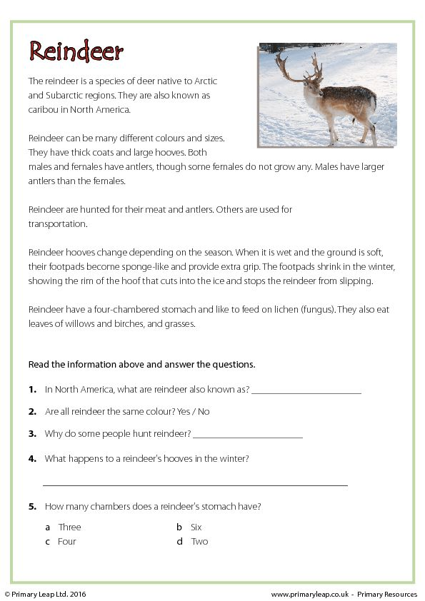 The 25+ best Free reading comprehension worksheets ideas on ...