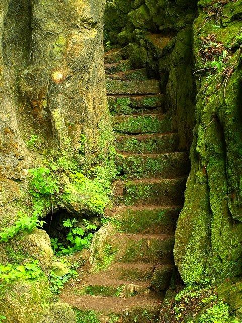 Looks like a wonderful, mysterious old place.