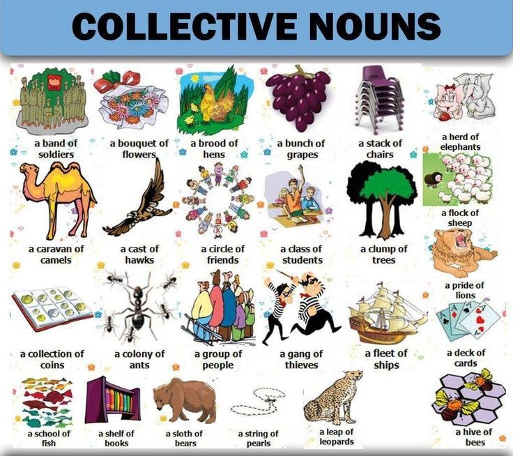 collective nouns A collective noun is a word that refers to a group a collective noun is a collection of things taken as a whole.