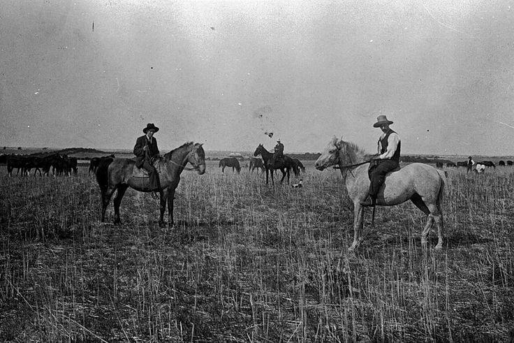 Stockmen and horses on 'Nyallo' farm, Hopetoun district, c1895.