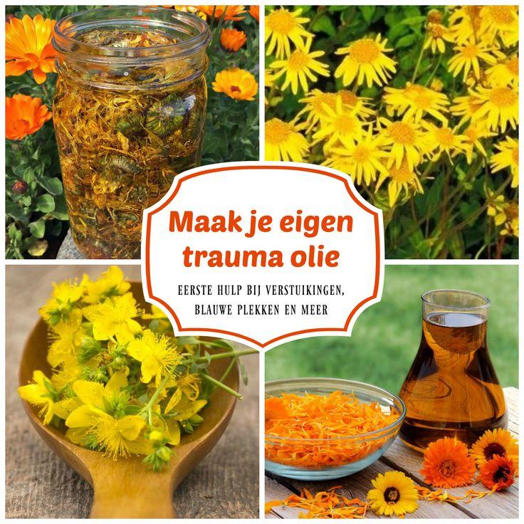 Trauma olie is een kruiden maceraat wat je makkelijk zelf kunt maken door gedroogde calendulablaadjes, arnica en st. janskruid in pure biologische olijfolie te laten trekken.