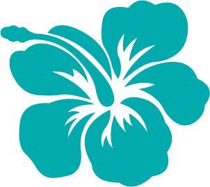 Thème anniversaire Hawaï