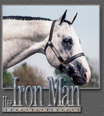 HBF Iron Man AQHA/APHA ... drool worthy stallion ..
