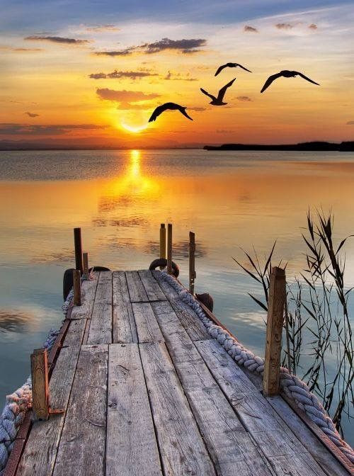 It's just so peaceful looking seeing the sun setting and thinking about sitting out on this Beautiful pier enjoying the Beautiful water and the Beautiful sunset!!!!!!!!!!!!!!!!