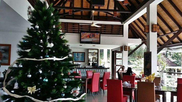 Season Greetings, Christmas is coming   #dabirahe #lembehhills #bitung #dive #lembeh #holiday #spa #resort #travel #tour #dive #honeymoon #romance