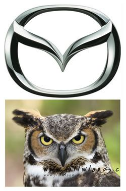 MAZDA MOTOR COMPANY OWL
