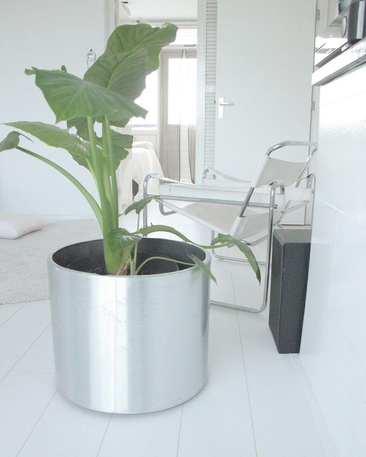 Living space rumah - afra