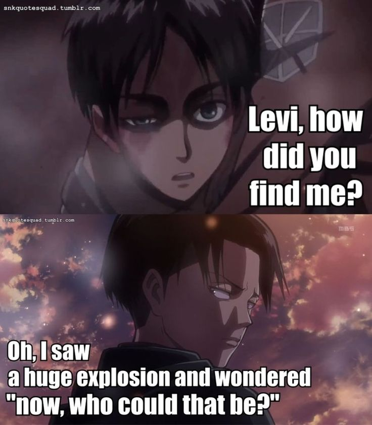 wELL OBVIOUSLY || Attack on Titan ♜