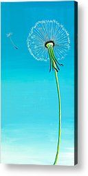 Paintings Canvas Prints - Dandelion Canvas Print by David Junod