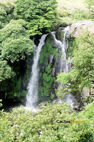 Terletak 10 kilometer dari Malino, 1500 meter dari permukaan laut. Rasakan kesejukan dari Air Terjun Lembanna yang berkabut. (Situated 10 kilometer from Malino, 1500 meter above sea level. Feel the coolness of the misty Lembanna Waterfall.)