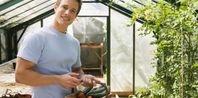 How to Grow Kirby Cucumbers