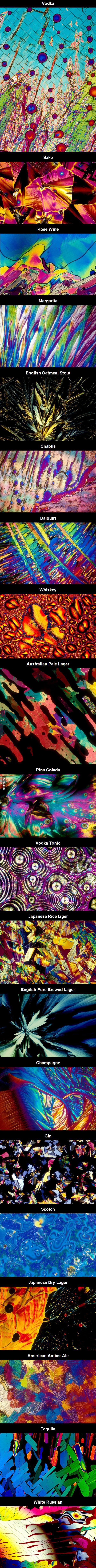 Different alcoholic drinks under a microscope. These would make amazing art for an apartment