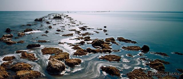 Sobre el agua by M. Mora, via Flickr  La Rivera, Mar Menor.