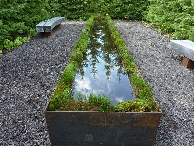 This long, narrow pond in a trough is lined by greenery.