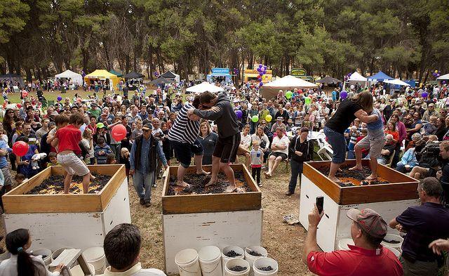 Barossa Vintage Festival 2013. Image by Dragan Radocaj Photography. © Barossa Grape & Wine Association