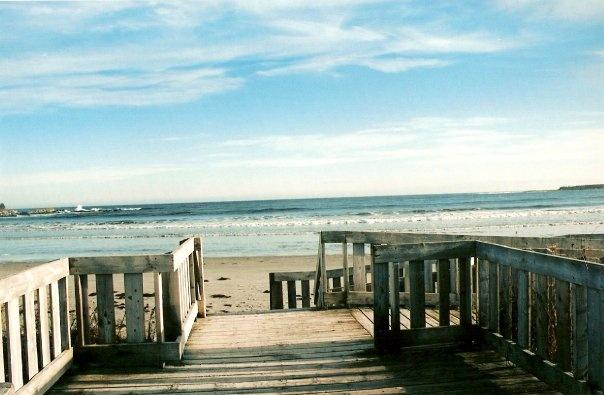 Beach Meadows, Nova Scotia, Canada