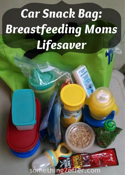 Car Snack Bag: A Must for Breastfeeding Moms- Are you a busy #breastfeeding mom? Do you take your nursling with you everywhere?