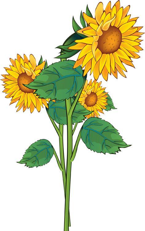 Victorian Summer Flowers Clip Art | Clip Art Of A Sunflower