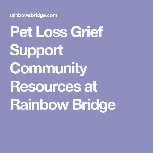 Pet Loss Grief Support Community Resources at Rainbow Bridge