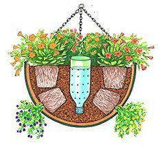 Making a self-watering Hanging Basket  Helga Meyer, Illustration zum Thema Garten