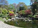 kyoto garden holland park - Google Search