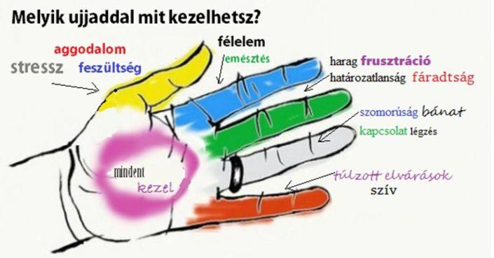 Szorongás, fejfájás, vagy puffadás gyötör? Megmutatjuk melyik ujjat kell masszírozni a gyógyulás érdekében. Yin Shun Jyutsu japán orvos szerint gyógyulásunk szó szerint a mi kezünkben…