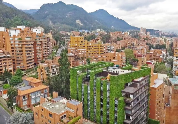 108 best images about living walls on pinterest green for Paisajismo bogota