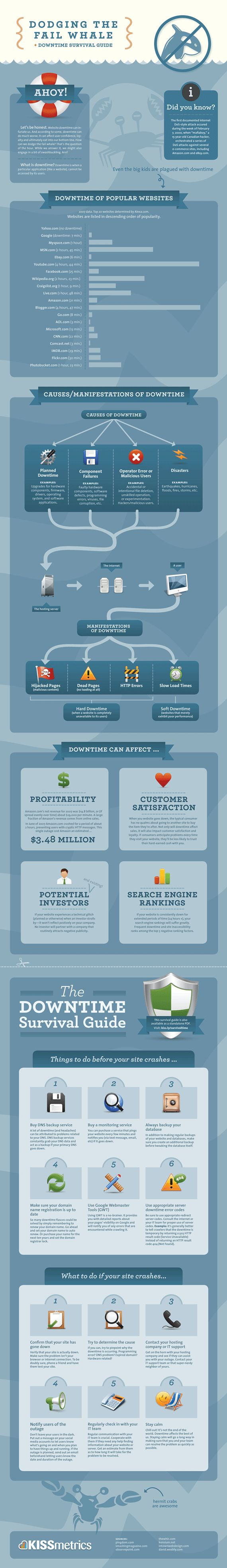 The Downtime Survival Guide Infographic: Guide Infographic, Downtime Survival Guide Sm, Fail Whales, Downtime Survival Guide Social, Agency Infographics, 3 S Infographics, Website Downtime, Downtime Infographic