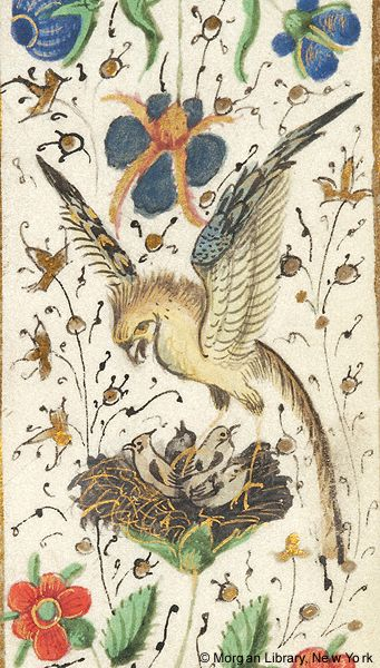 Bird standing in nest above four smaller birds | Book of Hours | Belgium | ca. 1470 | The Morgan Library & Museum