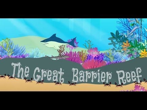 The Great Barrier Reef - Facts & Information | Mocomi Kids - YouTube