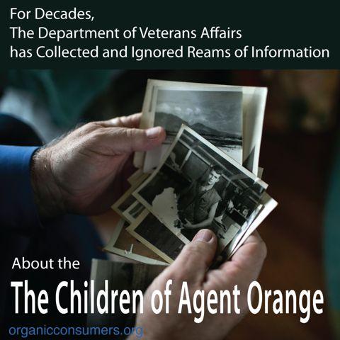 Agent Orange Effects On Veterans
