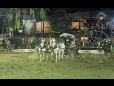 Universo Equino en el Portico 2013. Muestra de diferentes razas de caballos.