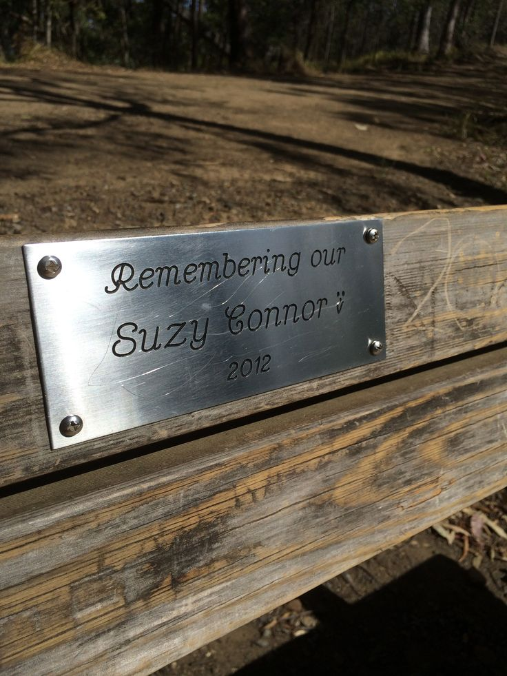 My beautiful friend Suzy Connor's memorial chair at Mt Coot-tha