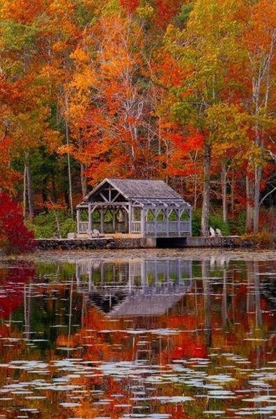 Autumn at the lake, we'll get the boat ready for you!