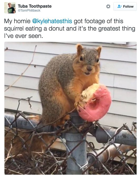 """DO YOU FEEL BETTER?! 