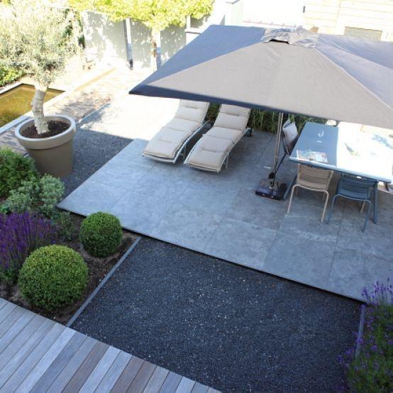 Stenen terras,mooie olijfboom
