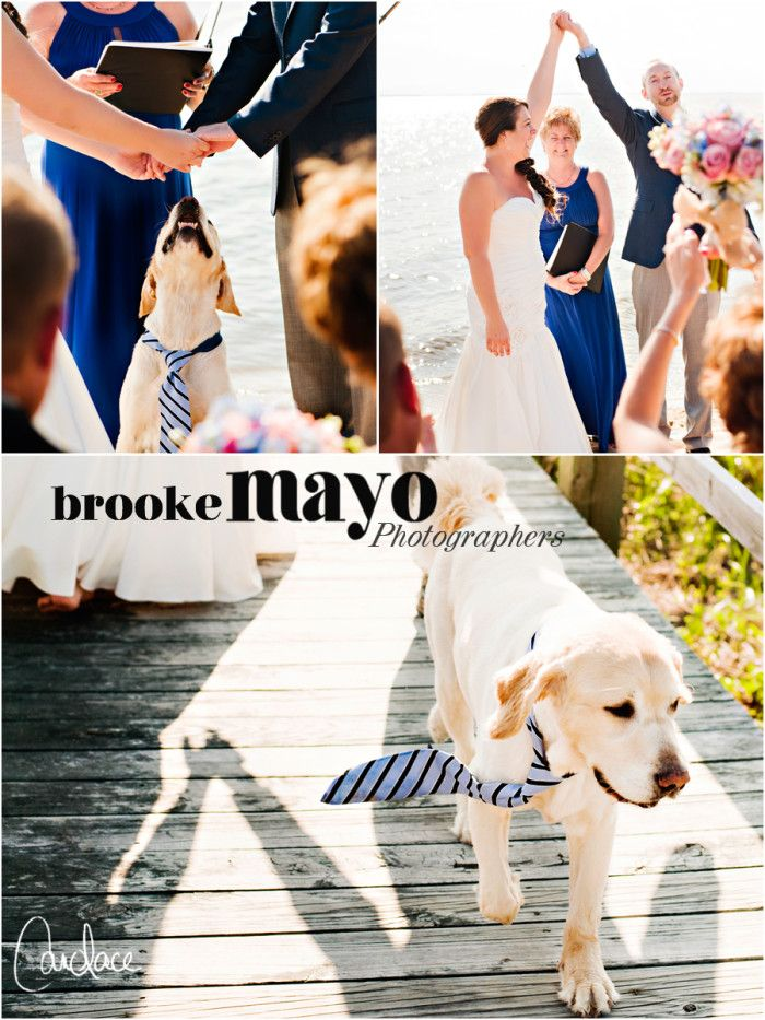 Duck OBX Wedding Outer Banks Destination