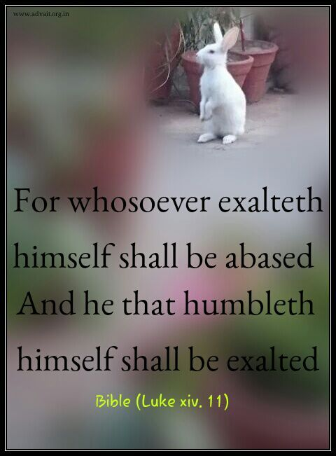 For whosoever exalteth himself shall be abased and he that humbleth himself shall be exalted.  ~ Bible #ShriPrashant #Advait #bible #jesus #god #surrender #ignorance #intelligence #grace Read at:- prashantadvait.com Watch at:- www.youtube.com/c/ShriPrashant Website:- www.advait.org.in Facebook:- www.facebook.com/prashant.advait LinkedIn:- www.linkedin.com/in/prashantadvait Twitter:- https://twitter.com/Prashant_Advait