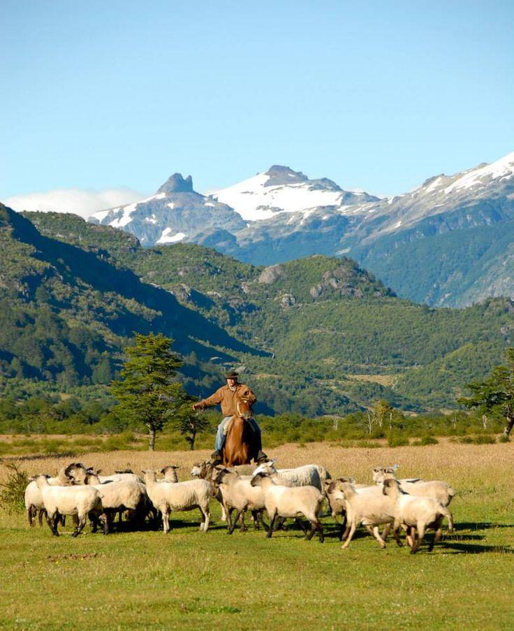 Patagonia Sur - Valle California: https://www.facebook.com/media/set/?set=a.253382184702942.57872.179383292102832&type=3