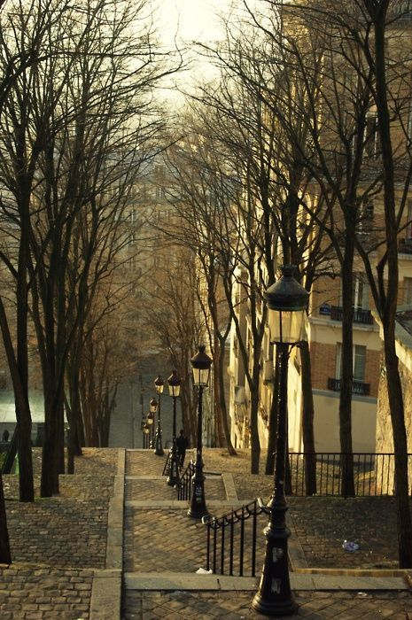 Autumn, Montremont, Paris, France.  Look how gold the light is --