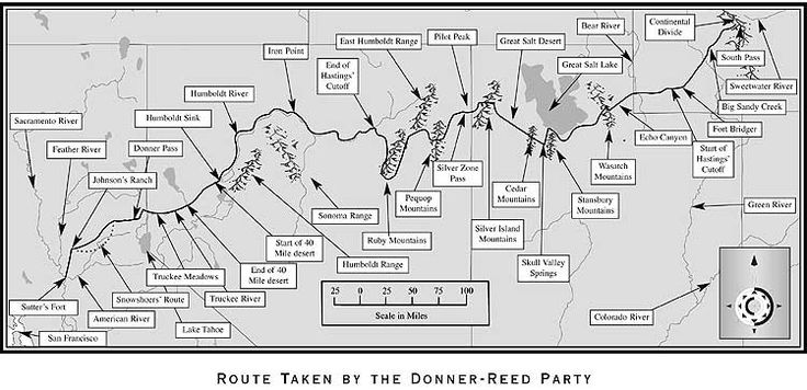 an analysis of the donner party The donner party was a group of california-bound american settlers caught up in the westering fever of the 1840sthey became known for resorting to cannibalism while snowbound in the sierra nevada.
