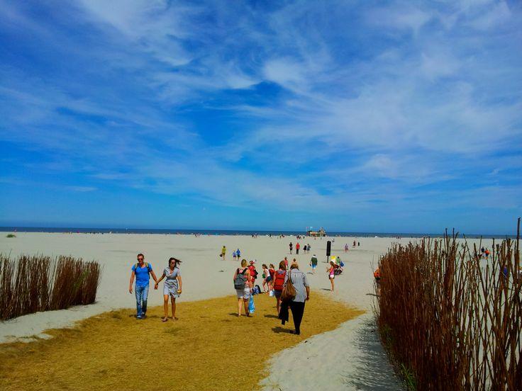 The beach of Schiermonikoog, the Netherlands (the Wadden Islands). Photo credits : Ingrid Jonkers.