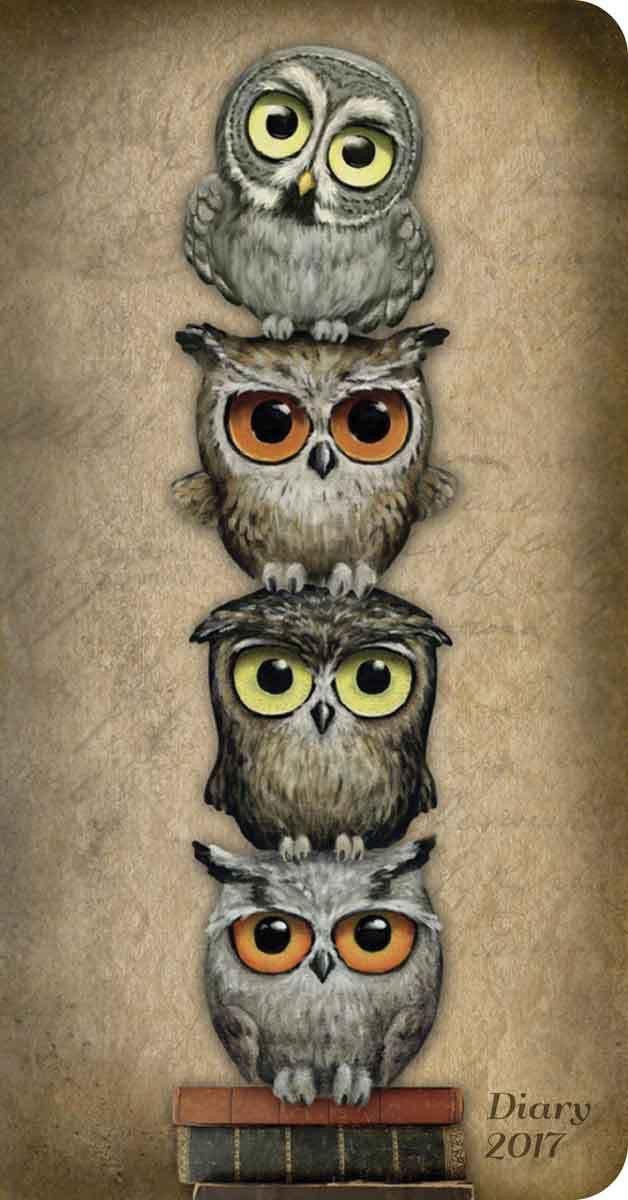 Owls ~