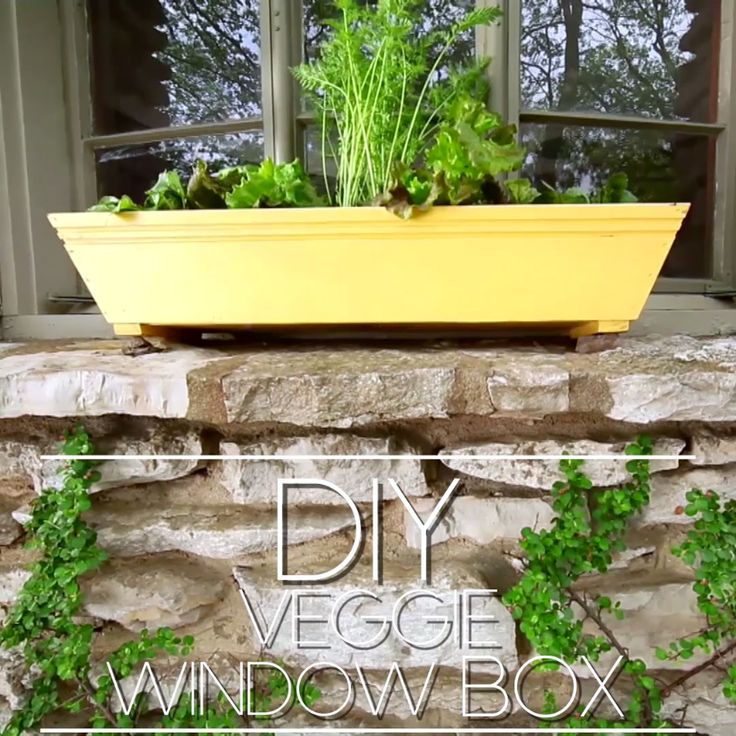 Kitchen Window Herb Planter: Best 20+ Indoor Window Boxes Ideas On Pinterest