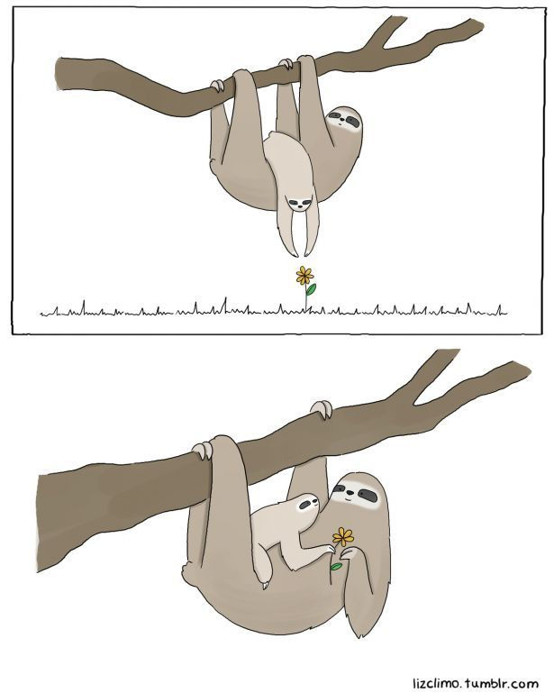 Liz Climo: Brilliant Comic Artist | Her Campus